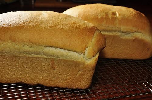 Blender Made White Bread